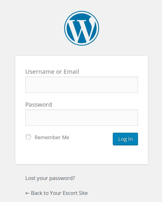 An example of the real login page